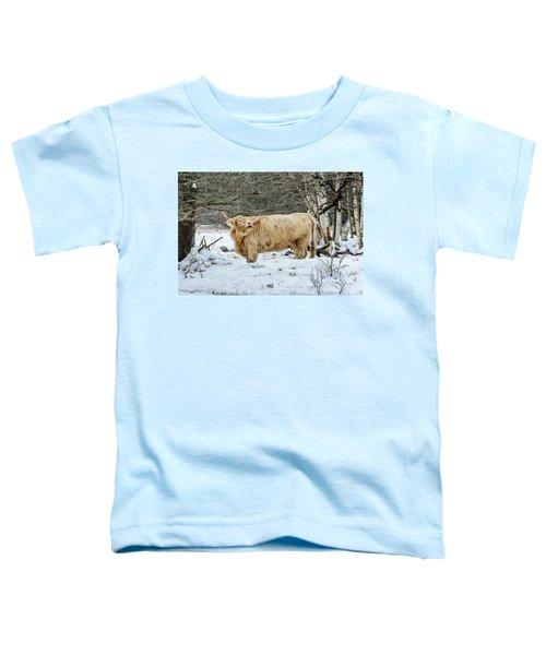 Highlander In Winter Toddler T-Shirt