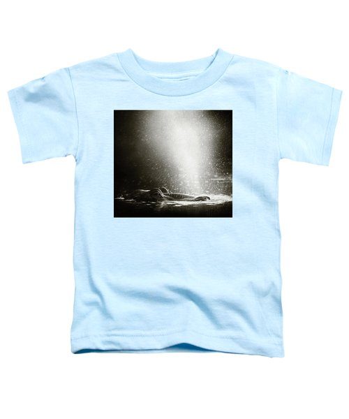 Hippo Blowing  Air Toddler T-Shirt