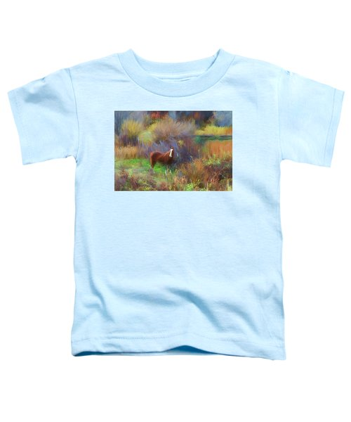 Horse Of Many Colors Toddler T-Shirt