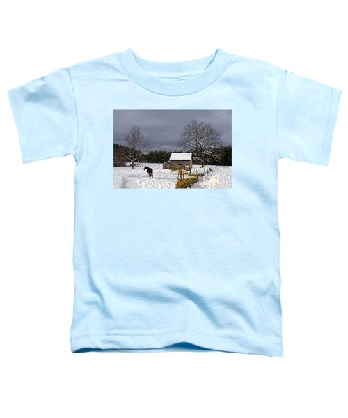 Horses In Snow Toddler T-Shirt