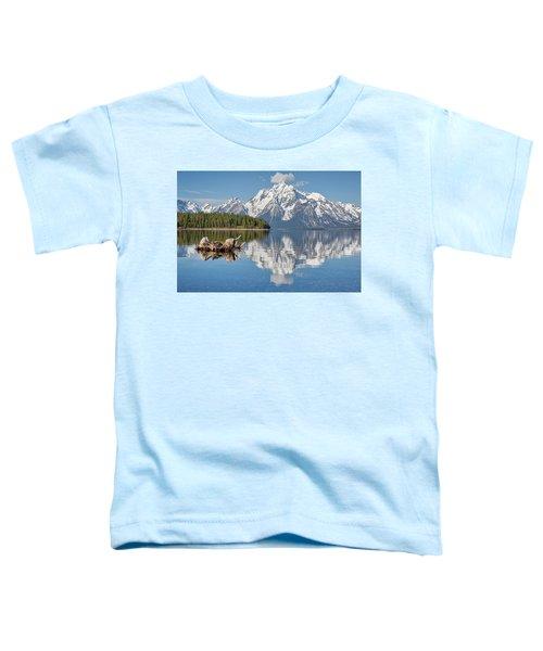 Jackson Lake, Gtnp Toddler T-Shirt