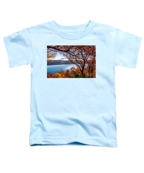 Keuka Lake Vista Toddler T-Shirt