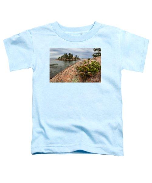 Killarney-island-pink-4530 Toddler T-Shirt