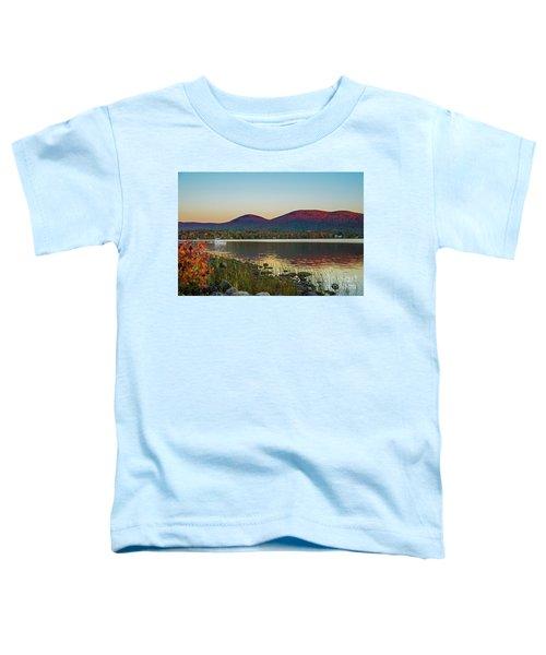 Lake Cruise Toddler T-Shirt