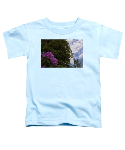Looking To The Sky Toddler T-Shirt