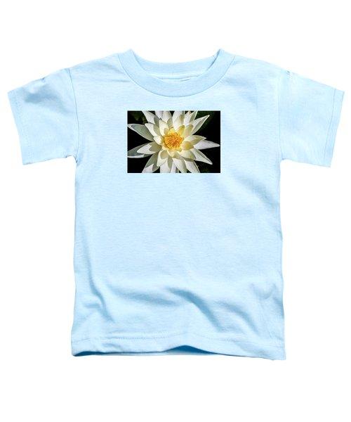 Macro Water Lily Toddler T-Shirt