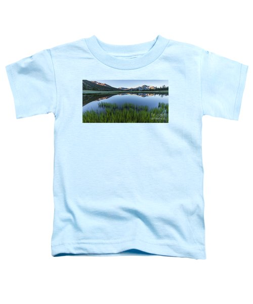 Meadow Reflections  Toddler T-Shirt