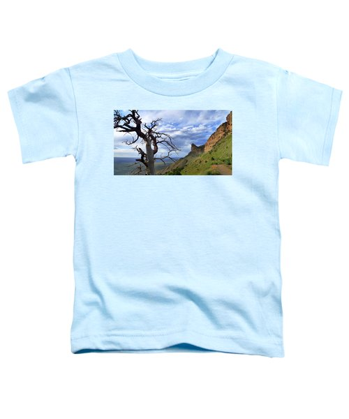Mesa Verde Mood Toddler T-Shirt