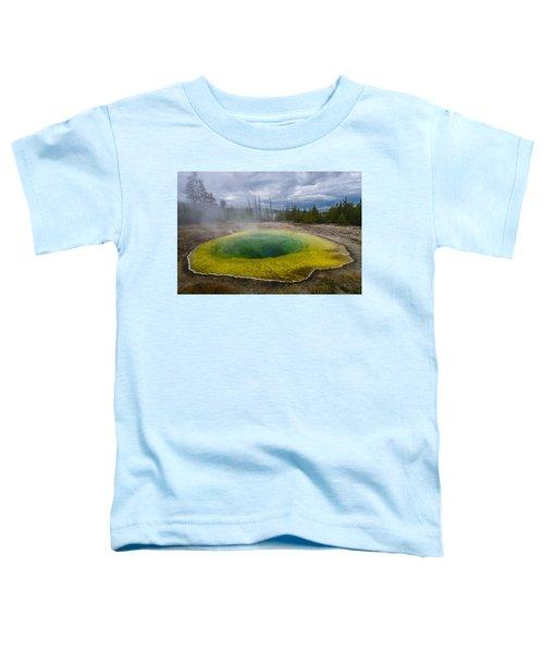 Morning Glory Pool Toddler T-Shirt