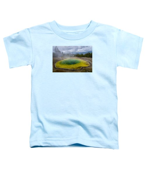 Morning Glory Pool Toddler T-Shirt