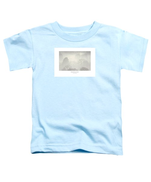Morning Mist Toddler T-Shirt