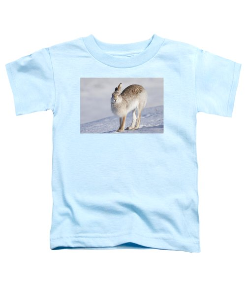 Mountain Hare In The Snow - Lepus Timidus  #2 Toddler T-Shirt