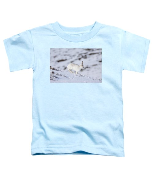 Mountain Hare - Scottish Highlands  #12 Toddler T-Shirt
