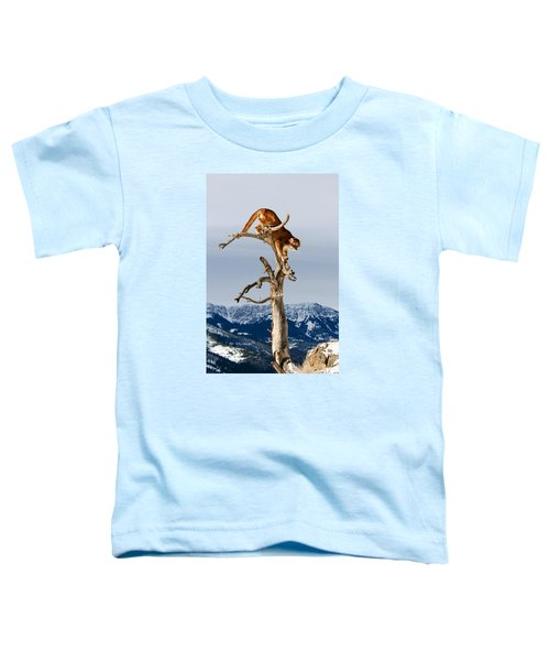 Mountain Lion In Tree Toddler T-Shirt