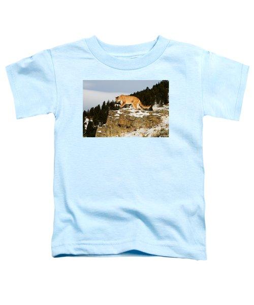 Mountain Lion On Rocks Toddler T-Shirt