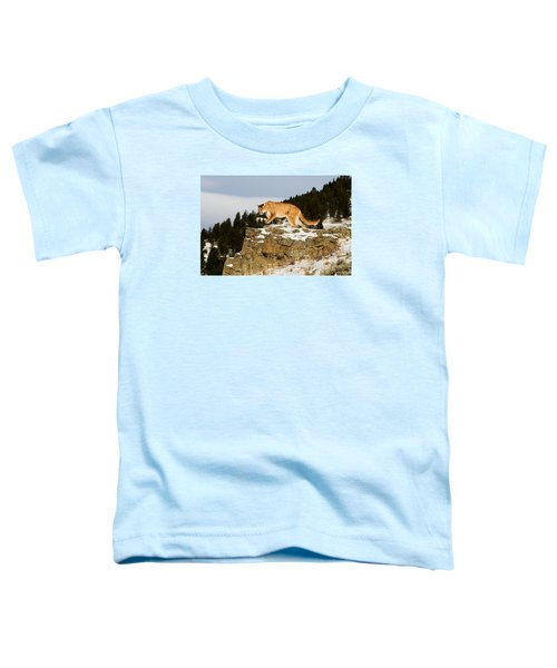 Mountain Lion On Rocks Toddler T-Shirt