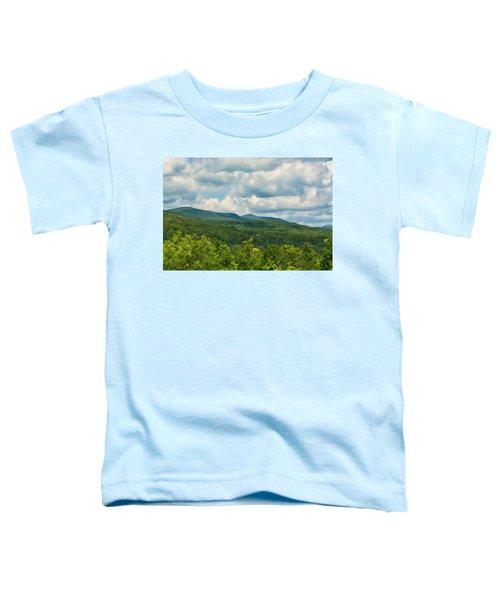 Mountain Vista In Summer Toddler T-Shirt