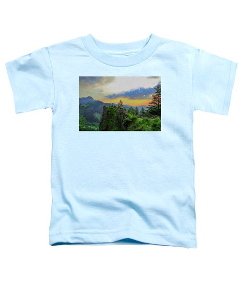 Mountains Tatry National Park - Pol1003778 Toddler T-Shirt