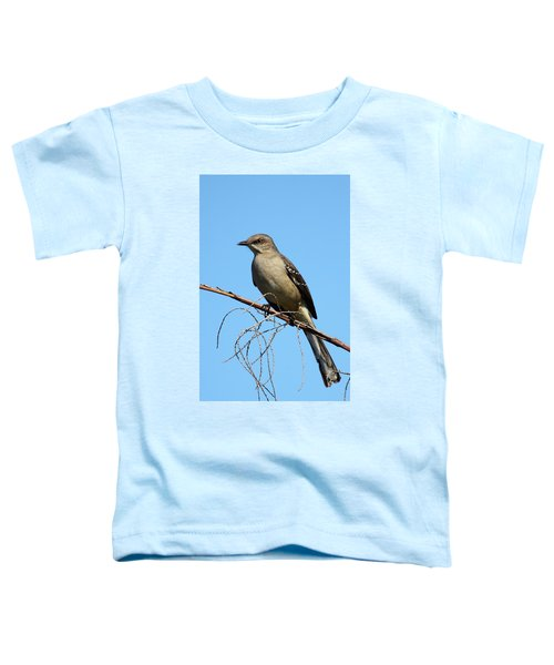 Northern Mockingbird Toddler T-Shirt