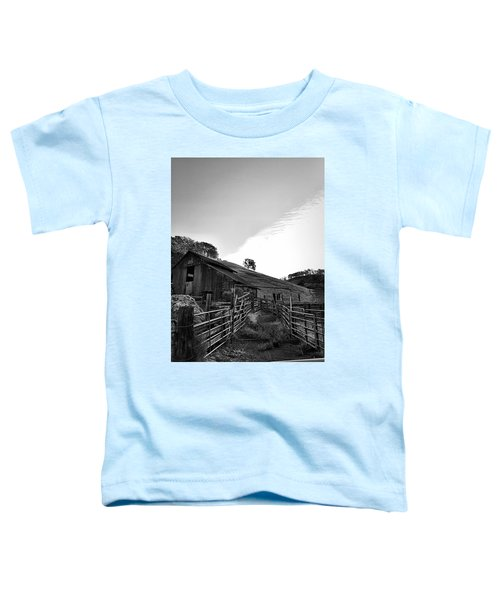 Old Borges Ranch Toddler T-Shirt