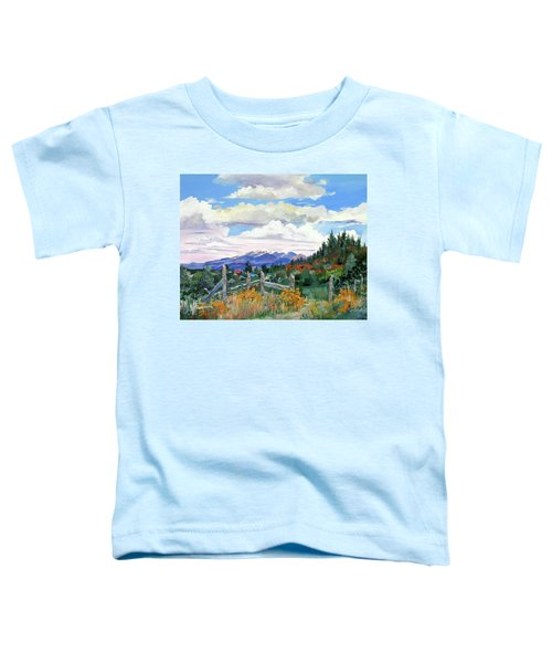 Old North Fence-in Colorado Toddler T-Shirt