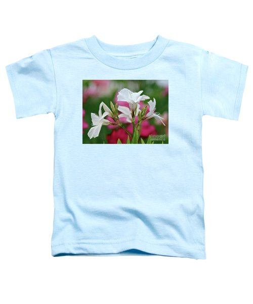 Oleander Casablanca 1 Toddler T-Shirt