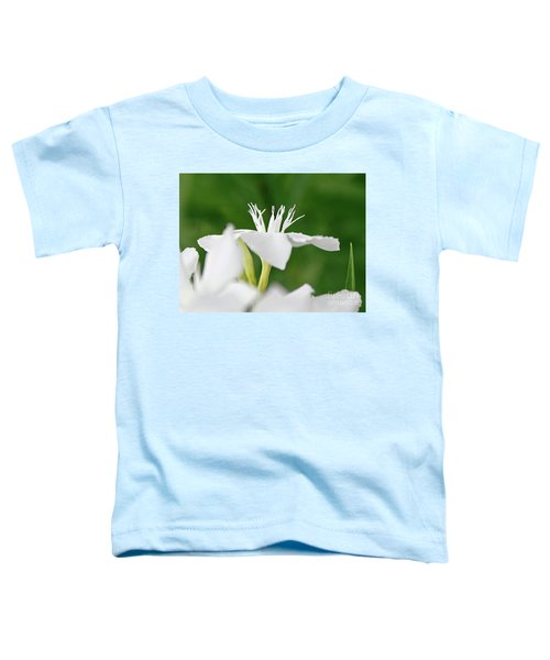Oleander Ed Barr 1 Toddler T-Shirt