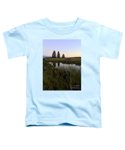 Once Upon A Time... Toddler T-Shirt