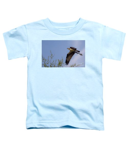 Osprey Collecting Sticks Toddler T-Shirt