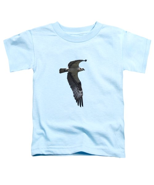 Osprey In Flight 2 Toddler T-Shirt by Priscilla Burgers