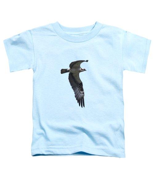 Osprey In Flight 2 Toddler T-Shirt