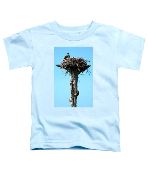 Osprey Point Toddler T-Shirt by Karen Wiles