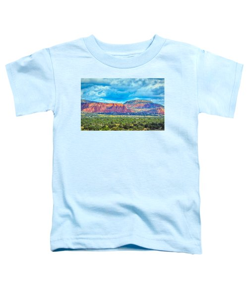 Painted New Mexico Toddler T-Shirt
