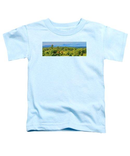 Peaks Of Otter Rainstorm Toddler T-Shirt