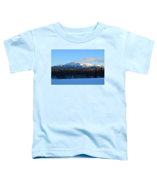 Pikes Peak From Cr511 Divide Co Toddler T-Shirt