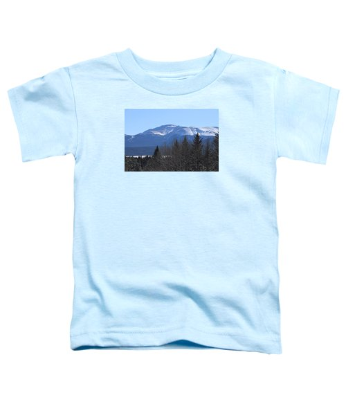 Pikes Peak Cr 511 Divide Co Toddler T-Shirt