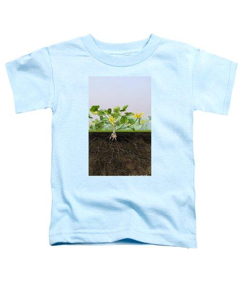 Pilewort Or Lesser Celandine Ranunculus Ficaria - Root System -  Toddler T-Shirt