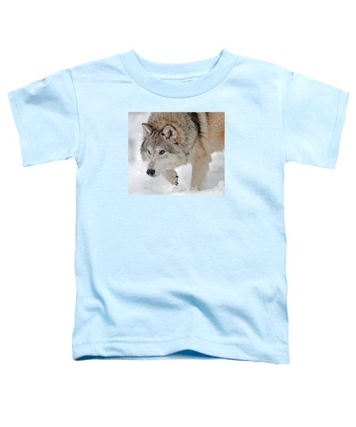 Prowling Wolf Toddler T-Shirt
