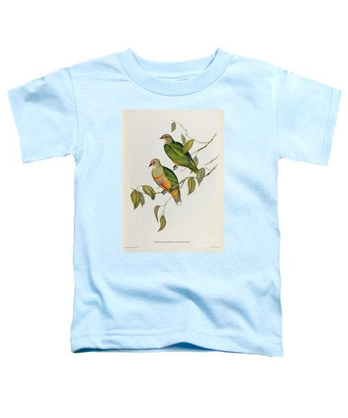Ptilinopus Ewingii Toddler T-Shirt by John Gould