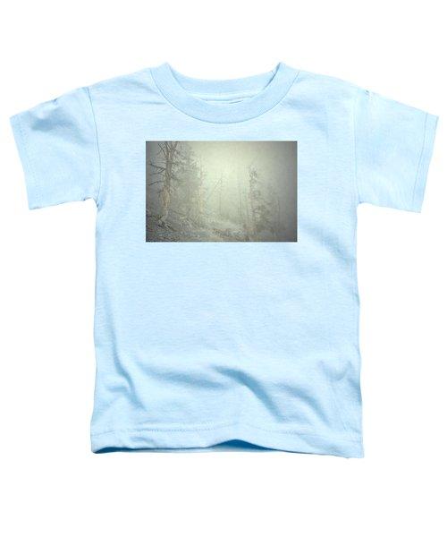 Quiet Type Toddler T-Shirt