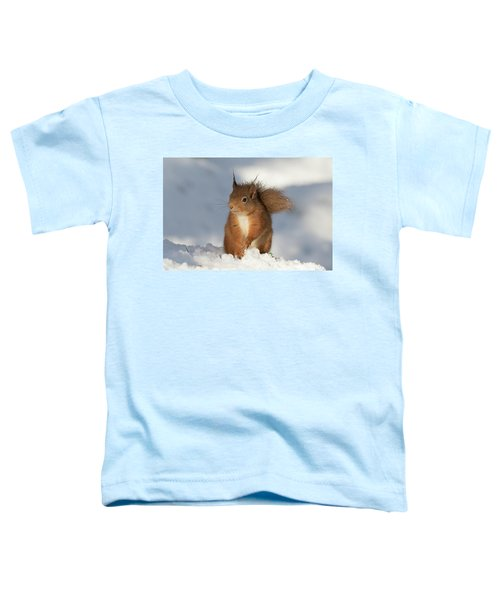 Red Squirrel In The Snow Toddler T-Shirt