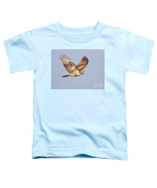Red Tailed Hawk 20100101-1 Toddler T-Shirt