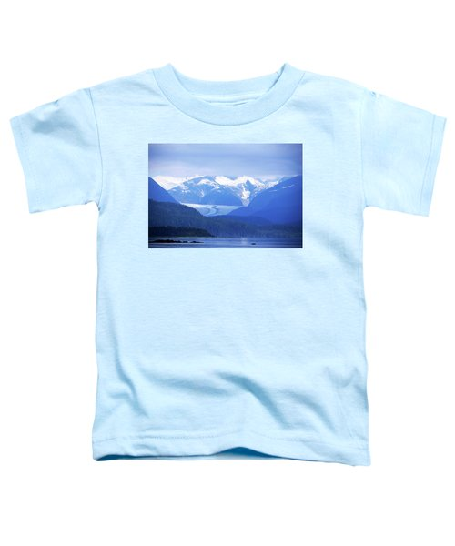 Remains Of A Glacier Toddler T-Shirt
