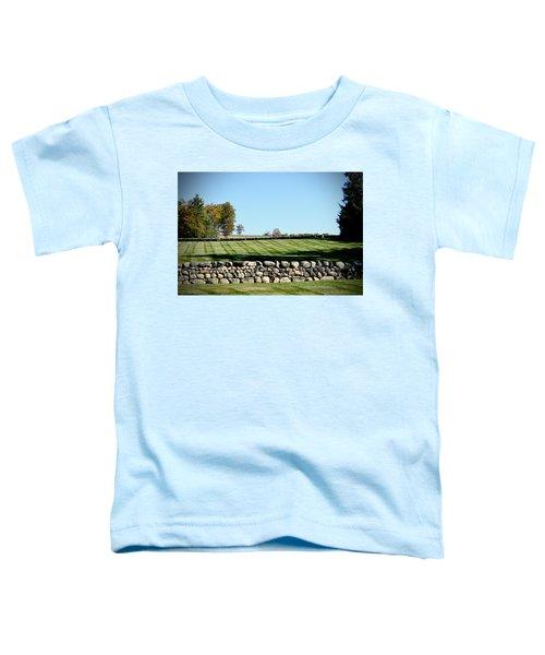 Rock Wall Lawn Toddler T-Shirt