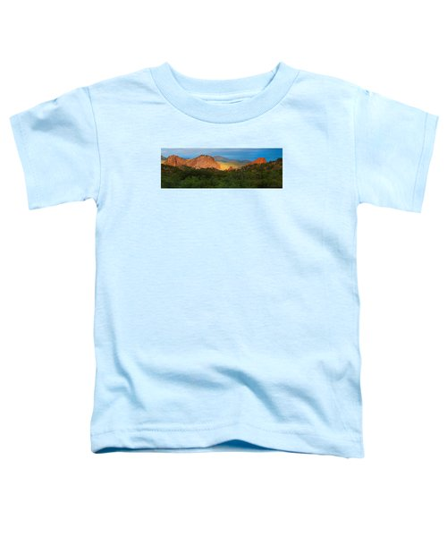 Rocky Mountain High Toddler T-Shirt