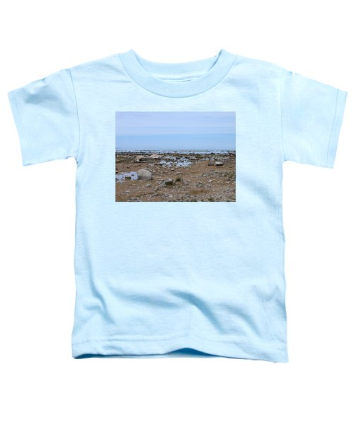Rocky Shore Toddler T-Shirt