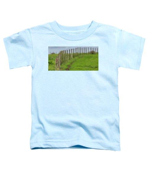 Row View  Toddler T-Shirt