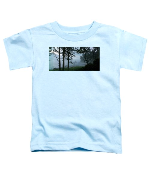 Ruby Beach II Washington State Toddler T-Shirt