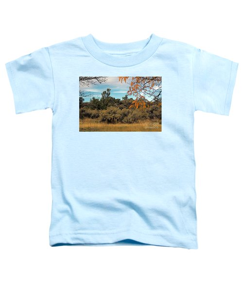 Sagebrush And Lava Toddler T-Shirt