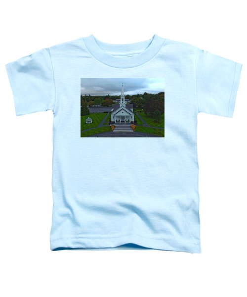 Saint Mary's Church From Above Toddler T-Shirt